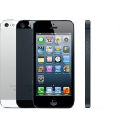 Riparazione Display Iphone 5