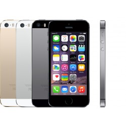Riparazione Display Iphone 5s